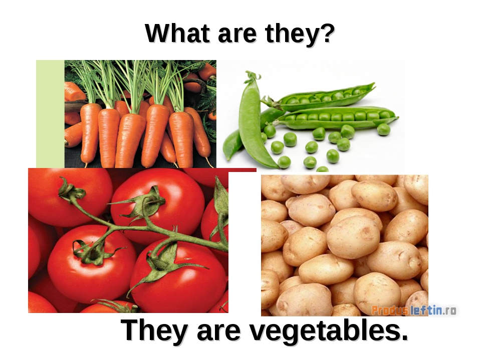 What are they? They are vegetables.