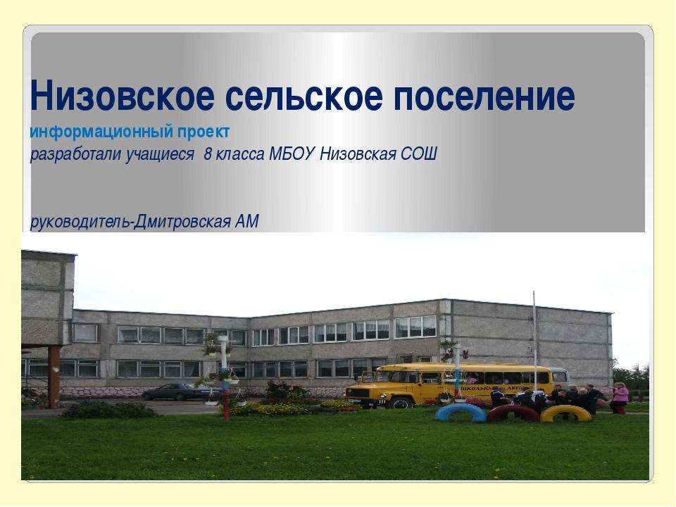Низовское сельское поселение информационный проект разработали учащиеся 8 кла...
