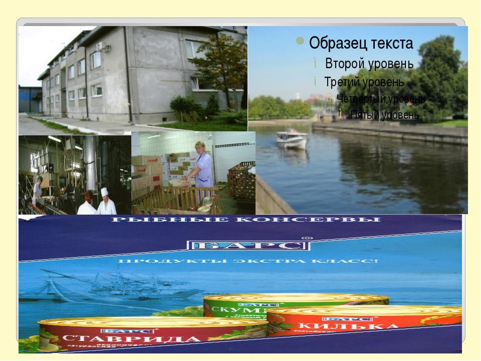 Река Преголя протекает с южной стороны поселка Родники – живописное место от...