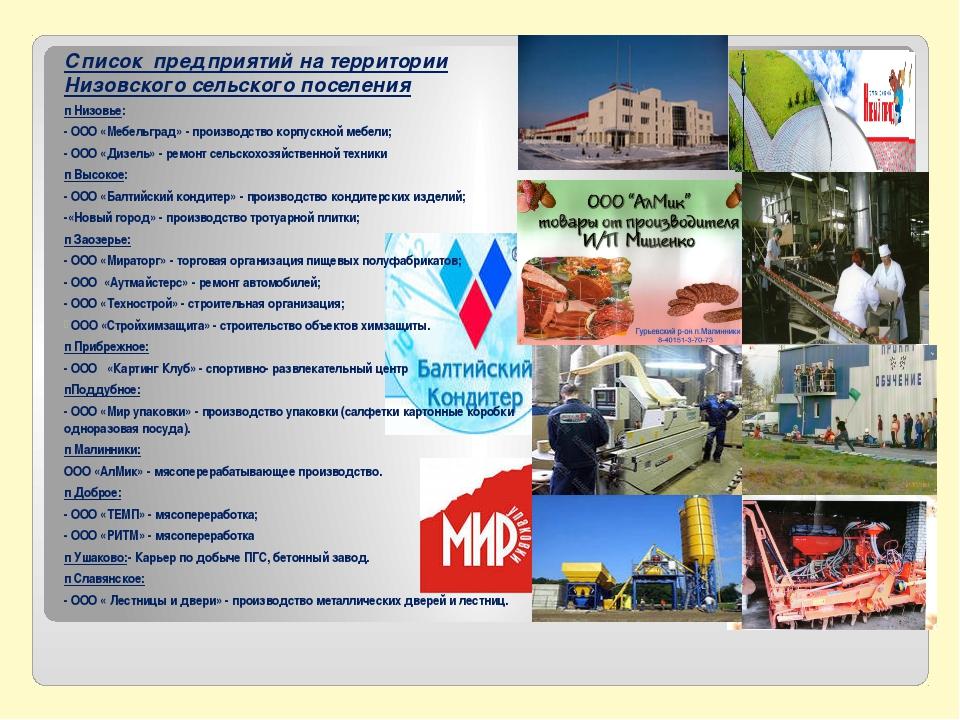 Список предприятий на территории Низовского сельского поселения п Низовье: -...