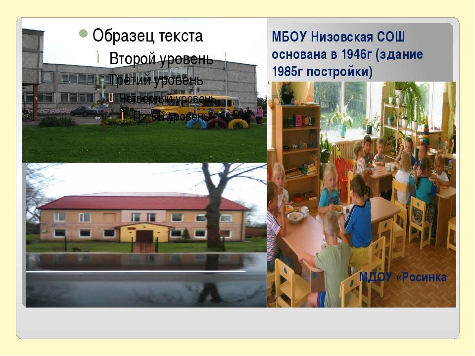 МБОУ Низовская СОШ основана в 1946г (здание 1985г постройки) МДОУ «Росинка
