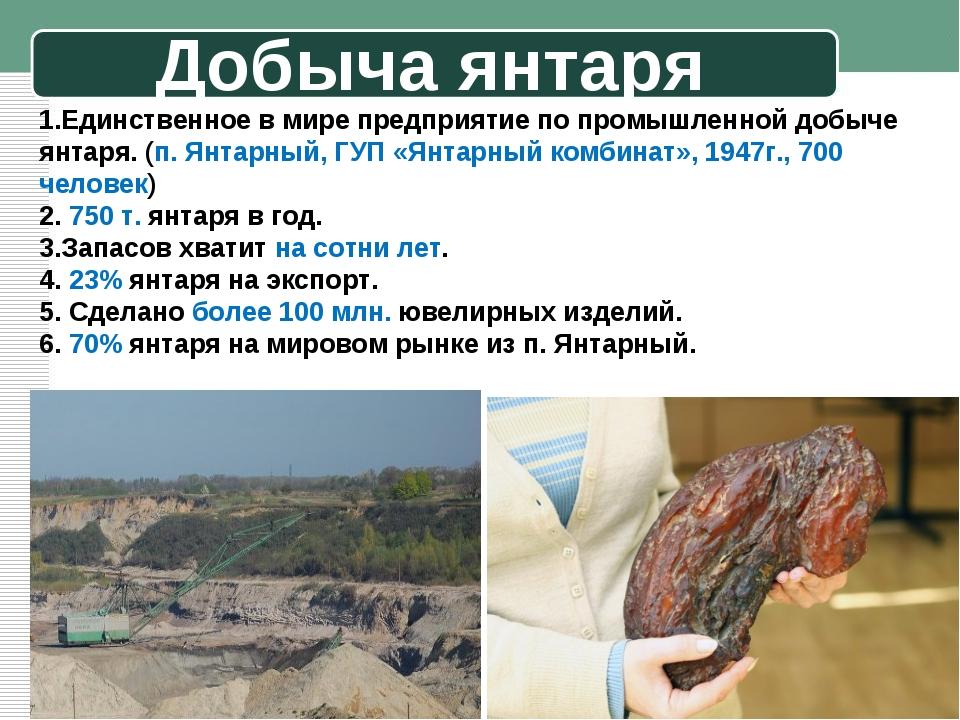 Добыча янтаря 1.Единственное в мире предприятие по промышленной добыче янтаря...