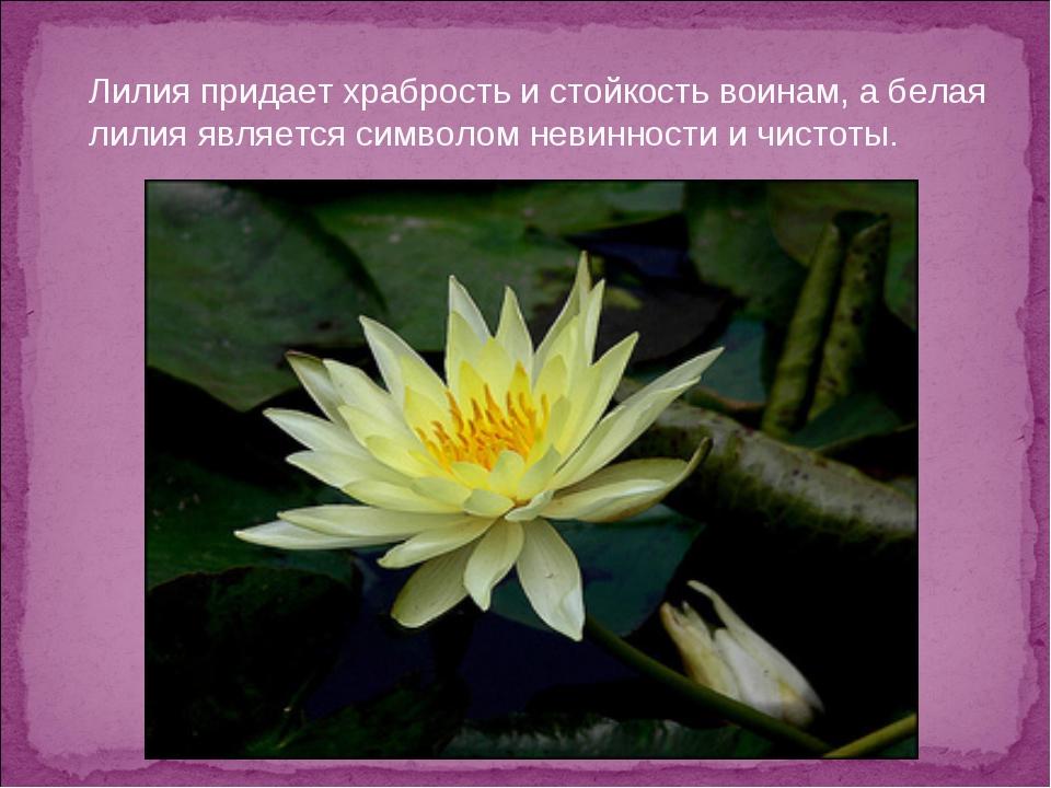 Лилия придает храбрость и стойкость воинам, а белая лилия является символом н...