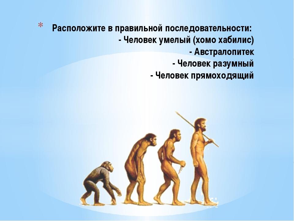 Расположите в правильной последовательности: - Человек умелый (хомо хабилис)...