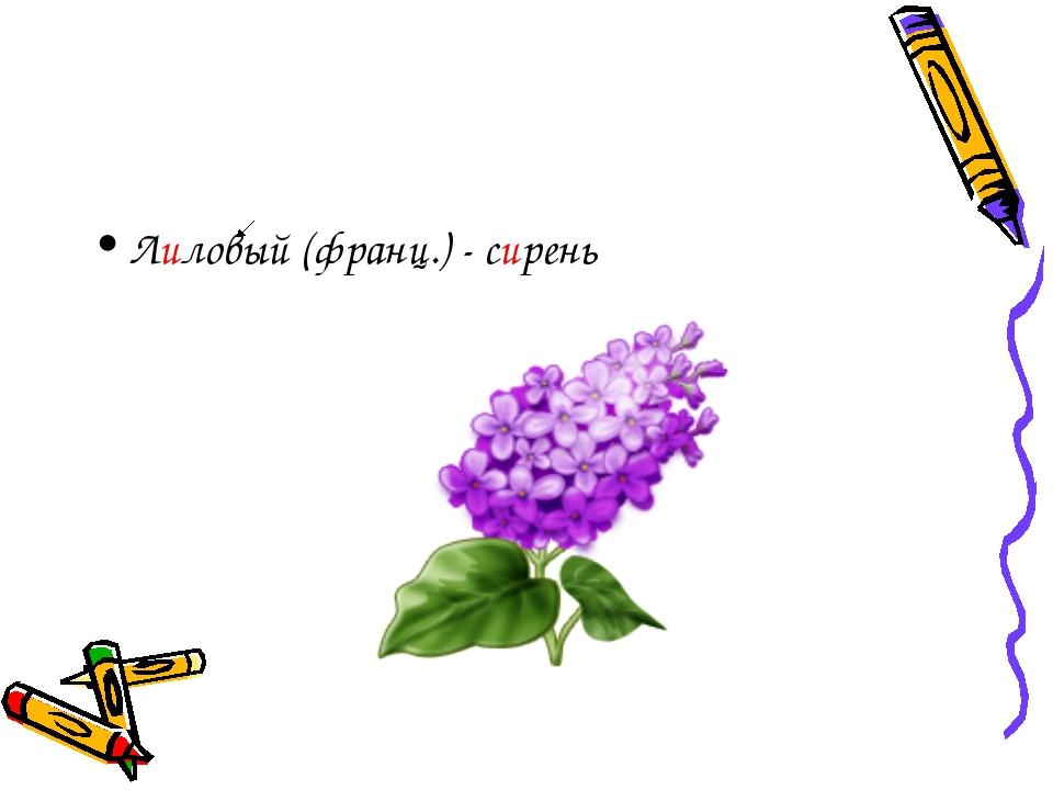 Лиловый (франц.) - сирень