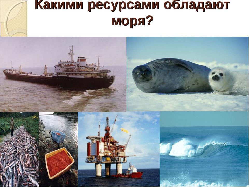 Какими ресурсами обладают моря?