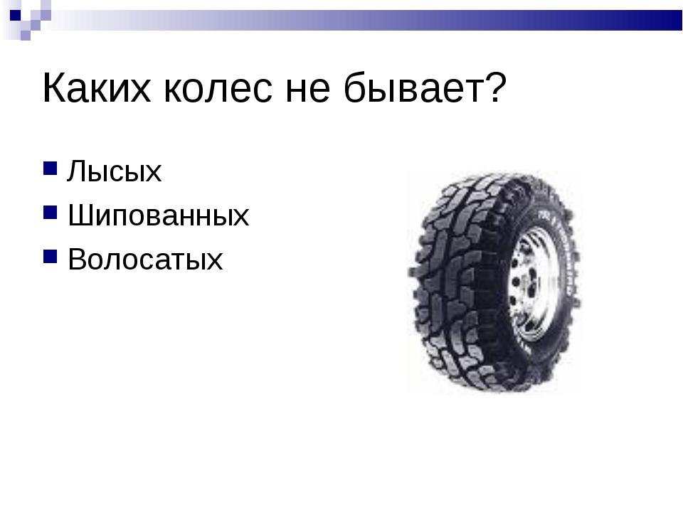 Каких колес не бывает? Лысых Шипованных Волосатых