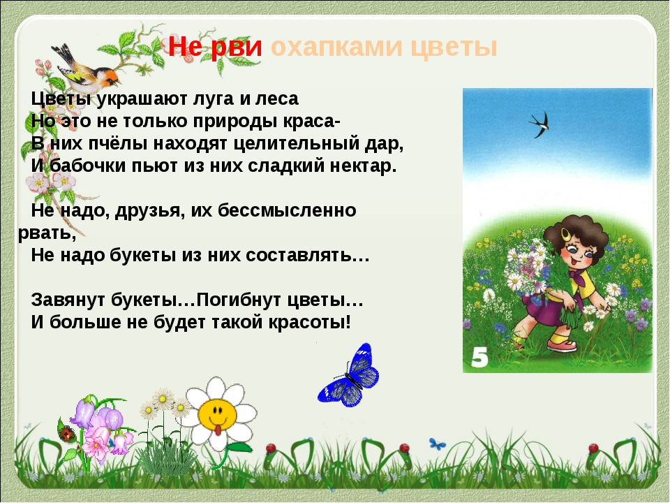 Не рви охапками цветы Цветы украшают луга и леса Но это не только природы кра...
