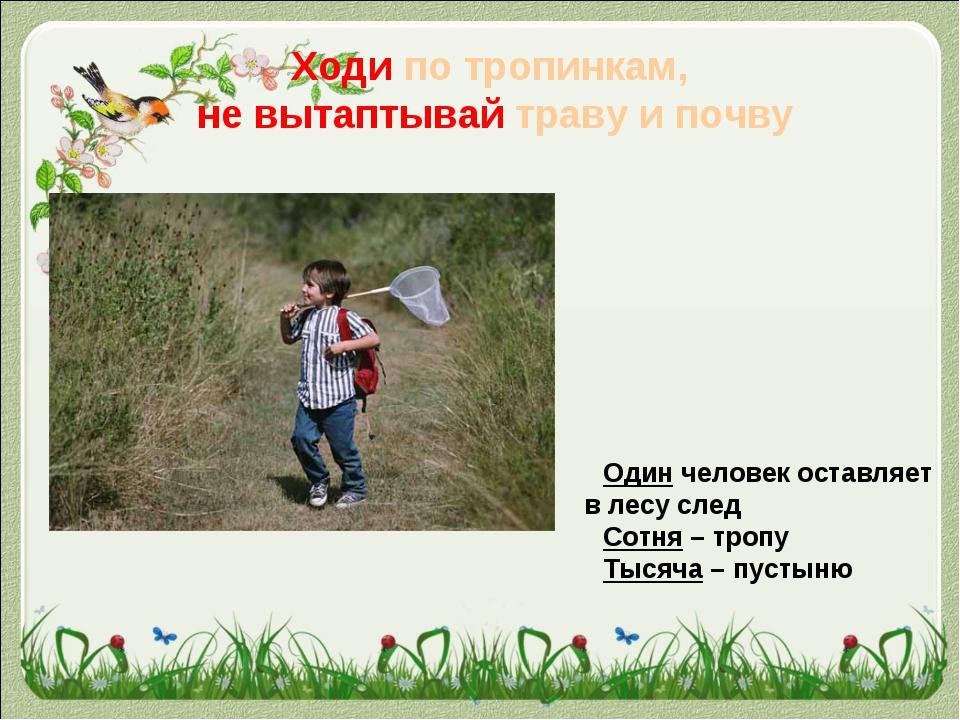 Ходи по тропинкам, не вытаптывай траву и почву Один человек оставляет в лесу...