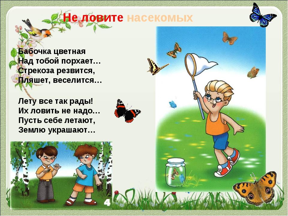 Не ловите насекомых Бабочка цветная Над тобой порхает… Стрекоза резвится, Пля...