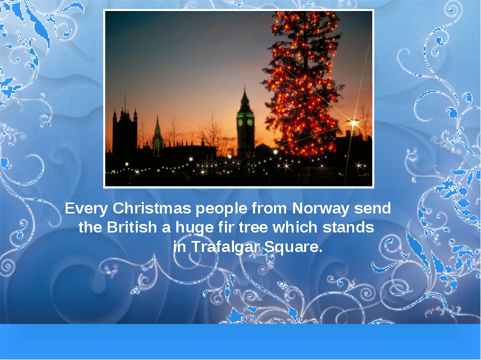 Every Christmas people from Norway send the British a huge fir tree which sta...