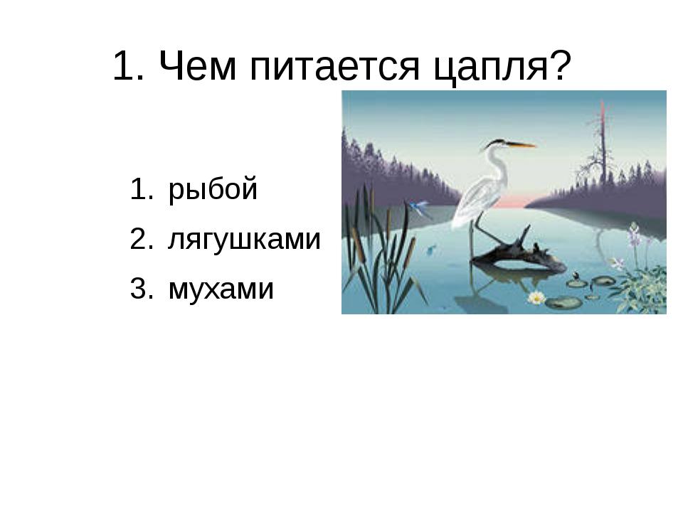 1. Чем питается цапля? рыбой лягушками мухами