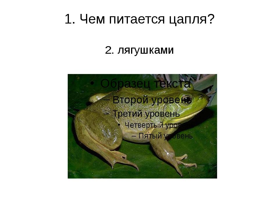 1. Чем питается цапля? 2. лягушками