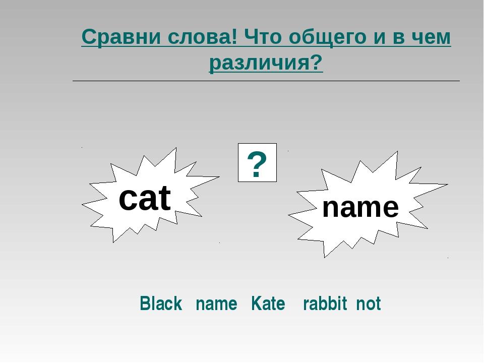Сравни слова! Что общего и в чем различия? Black name Kate rabbit not сat nam...