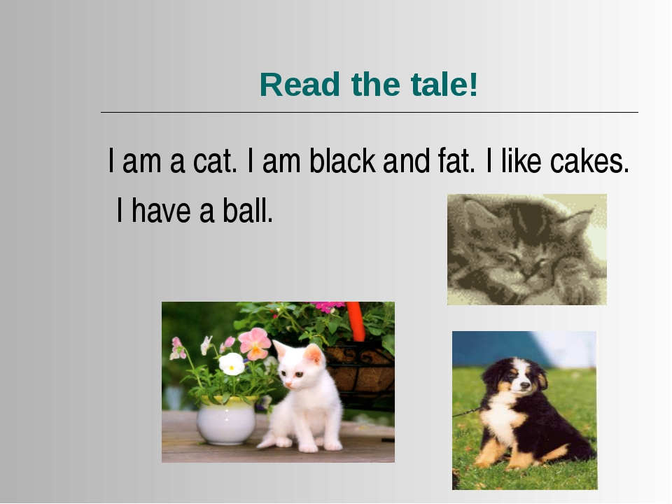 Read the tale! I am a cat. I am black and fat. I like cakes. I have a ball.
