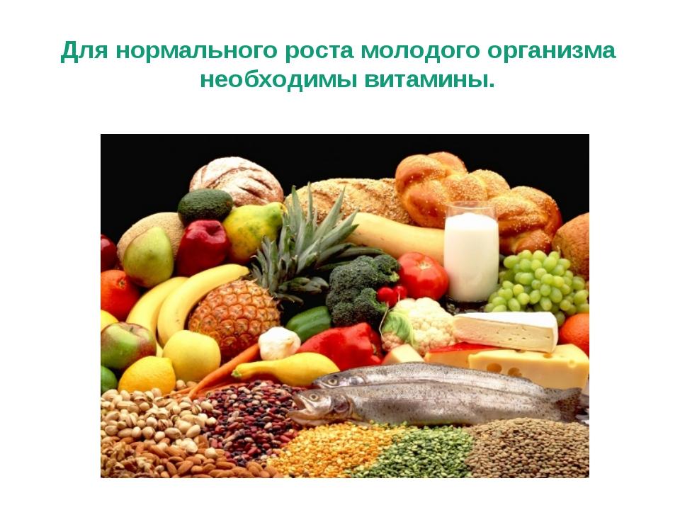 Для нормального роста молодого организма необходимы витамины.