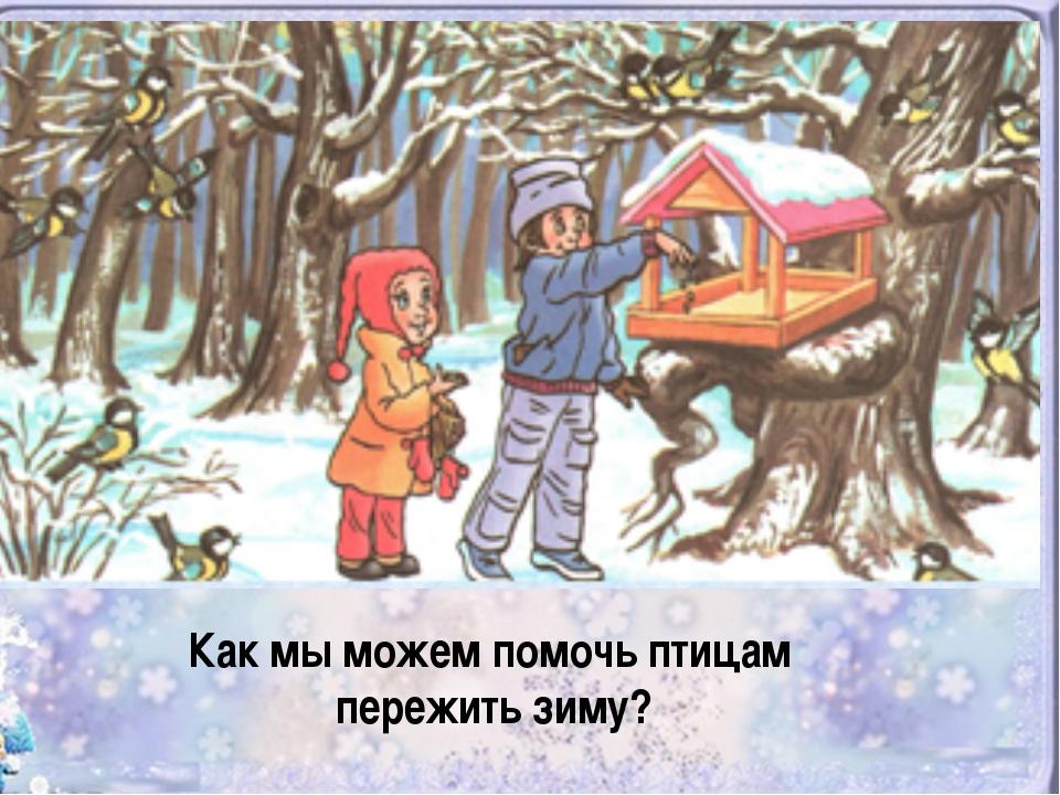 таком состоянии картинки на тему помощь животным зимой чужих ошибках