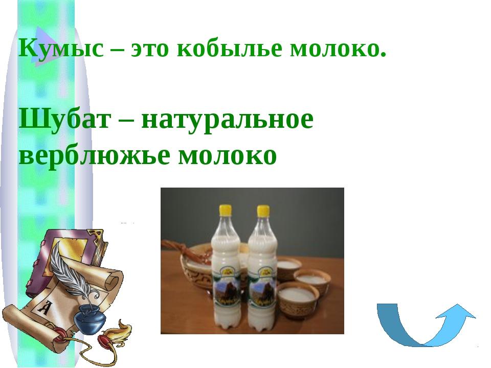 Кумыс – это кобылье молоко. Шубат – натуральное верблюжье молоко