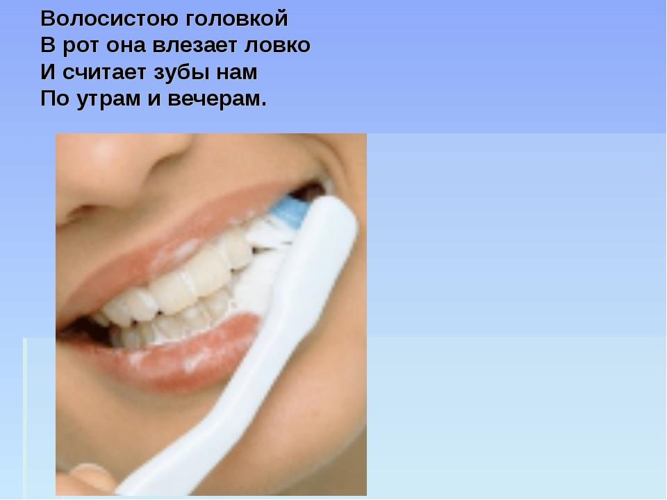 Волосистою головкой В рот она влезает ловко И считает зубы нам По утрам и веч...