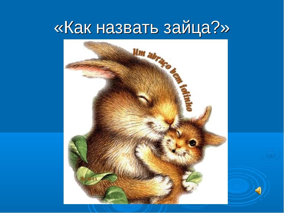 «Как назвать зайца?»