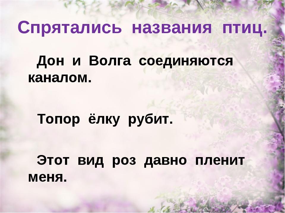 Спрятались названия птиц. Дон и Волга соединяются каналом. Топор ёлку рубит....