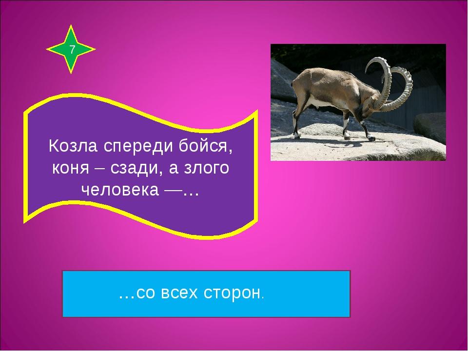 7 Козла спереди бойся, коня – сзади, а злого человека —… …со всех сторон.