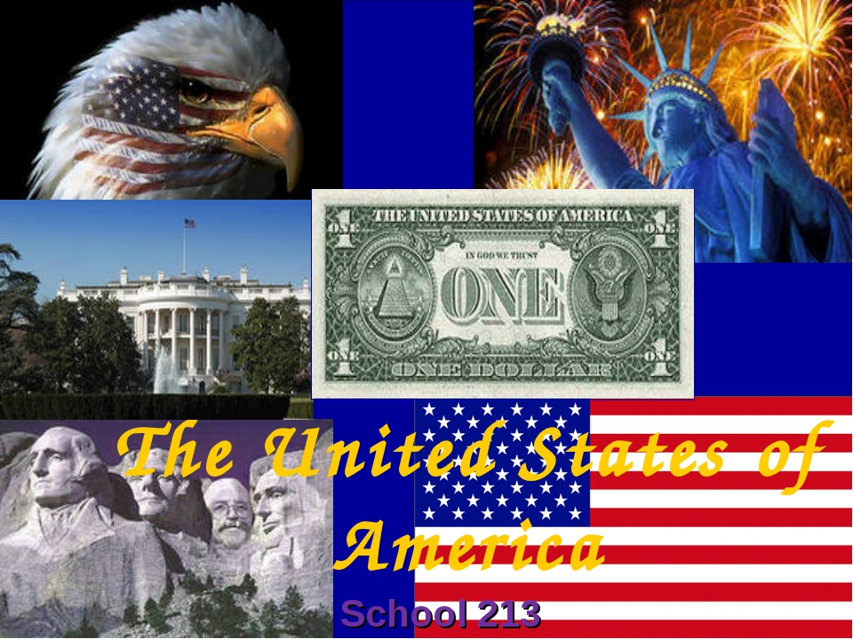 The United States of America School 213