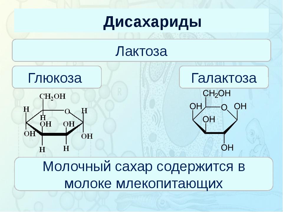 Дисахариды Зорина Наталья Николаевна, учитель биологии и экологии Лактоза Глю...