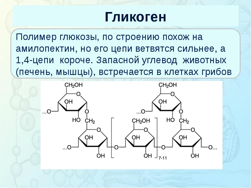 Гликоген Зорина Наталья Николаевна, учитель биологии и экологии Полимер глюко...
