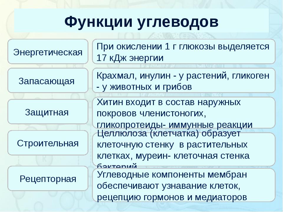 Функции углеводов Зорина Наталья Николаевна, учитель биологии и экологии Энер...
