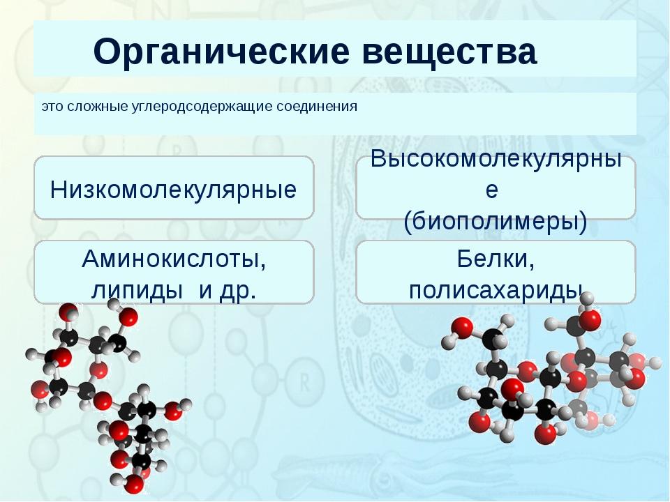 Органические вещества это сложные углеродсодержащие соединения Зорина Наталья...