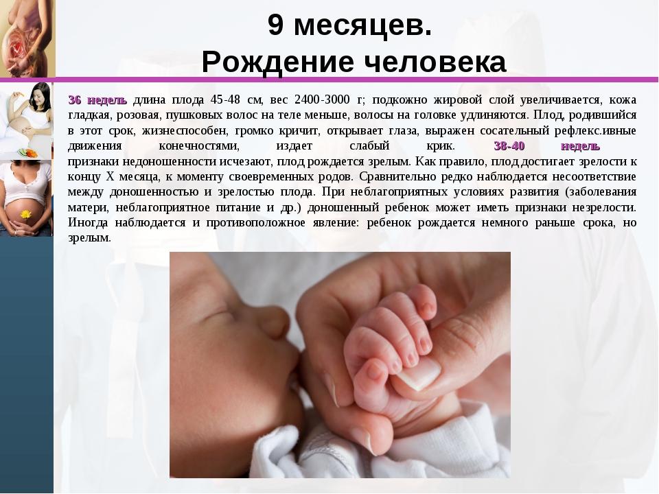 9 месяцев. Рождение человека 36 недель длина плода 45-48 см, вес 2400-3000 г;...