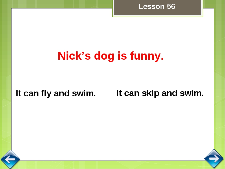 Nick's dog is funny. It can skip and swim. It can fly and swim. Lesson 56