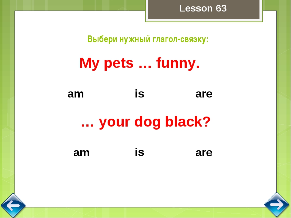 are is am My pets … funny. Выбери нужный глагол-связку: is are am … your dog...