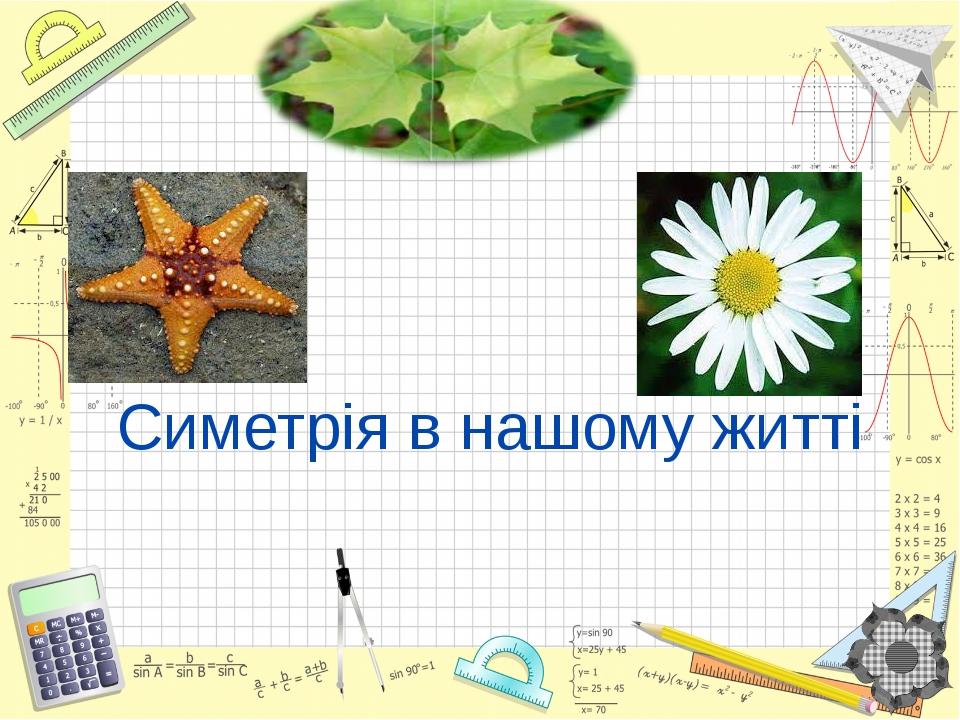 Симетрія в нашому житті Математика