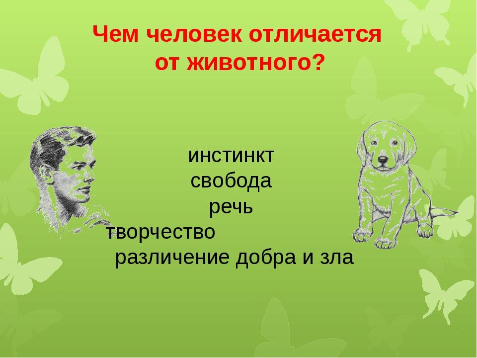 Чем человек отличается от животного? инстинкт свобода речь творчество различе...