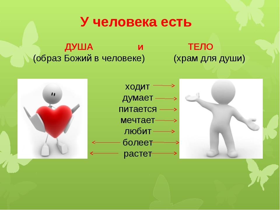 У человека есть ДУША и ТЕЛО (образ Божий в человеке) (храм для души) ходит ду...