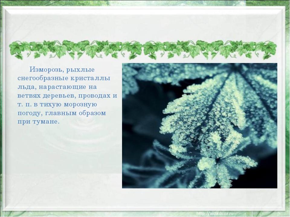 Изморозь, рыхлые снегообразные кристаллы льда, нарастающие на ветвях деревье...