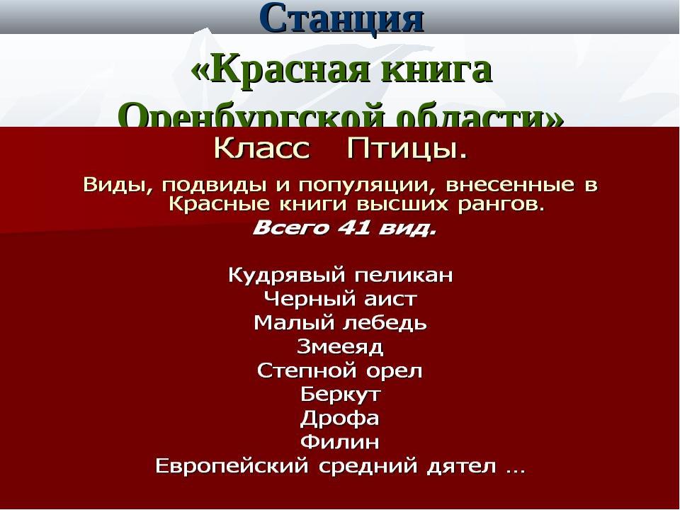 Станция «Красная книга Оренбургской области»