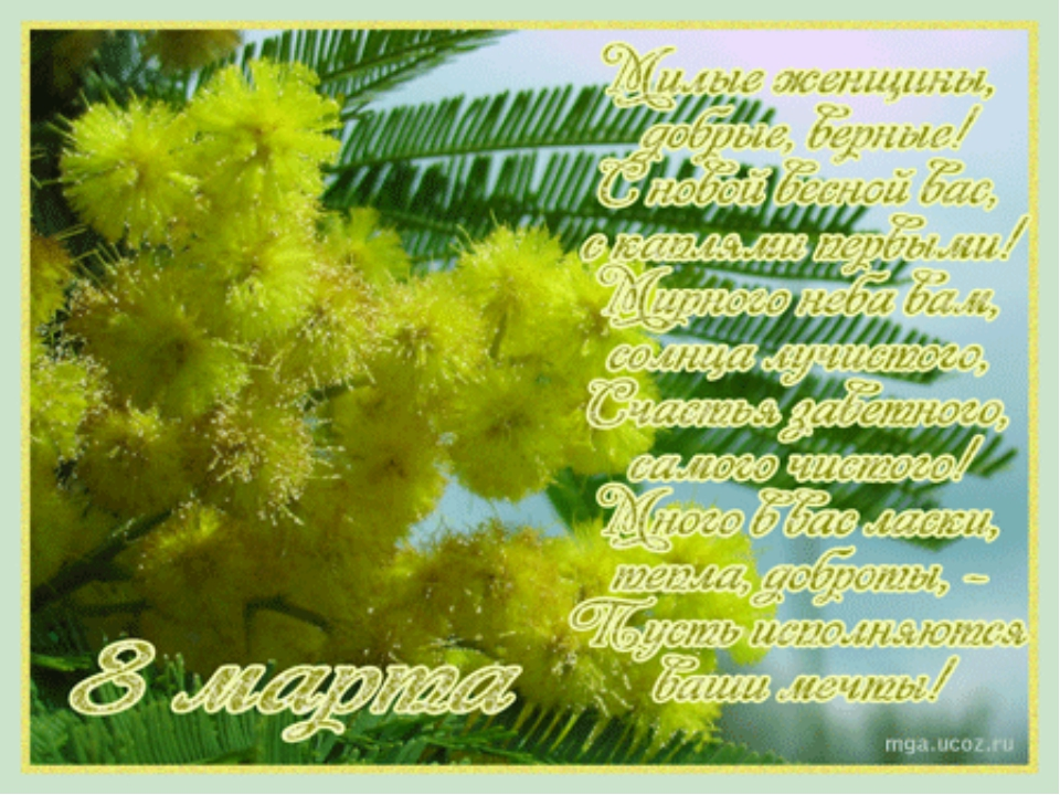 С 8 марта поздравления мимоза гифки