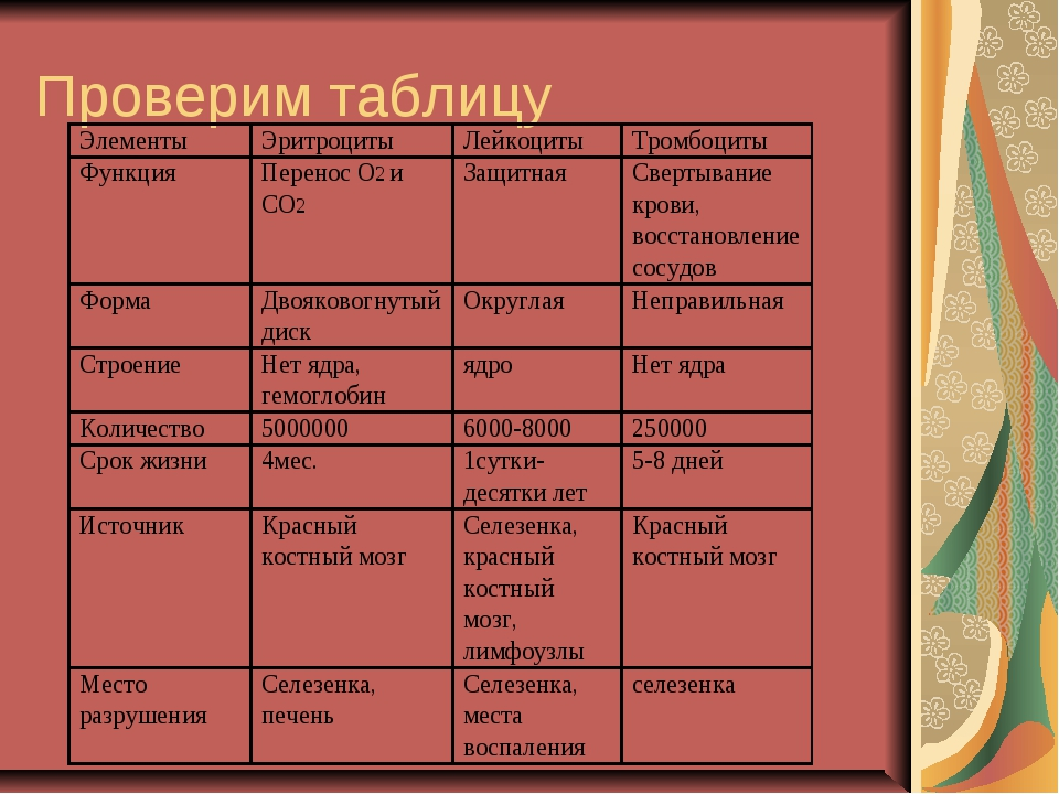 Проверим таблицу