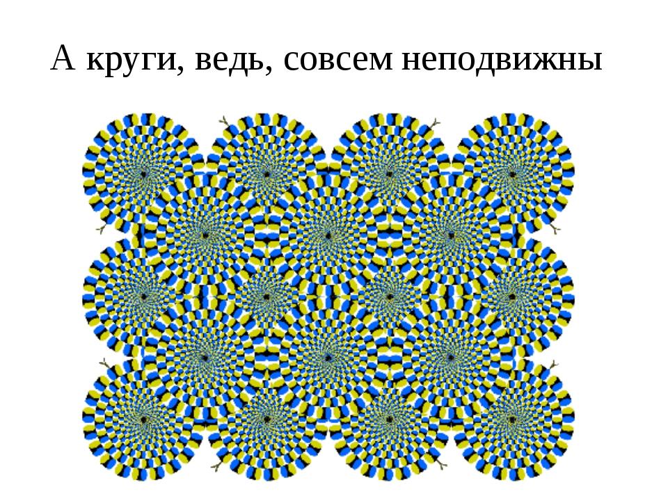 А круги, ведь, совсем неподвижны