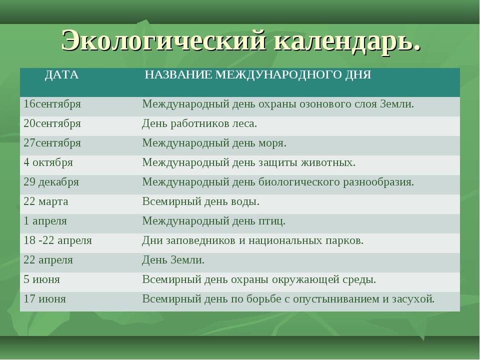 Экологический календарь в картинках для детей