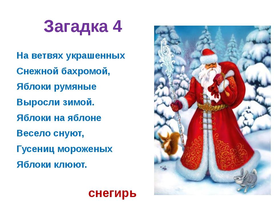 Загадка 4 На ветвях украшенных Снежной бахромой, Яблоки румяные Выросли зимой...
