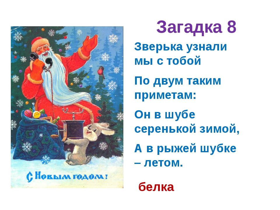 Загадка 8 Зверька узнали мы с тобой По двум таким приметам: Он в шубе сереньк...