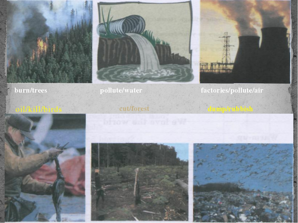 oil/kill/birds burn/trees pollute/water factories/pollute/air dump/rubbish c...