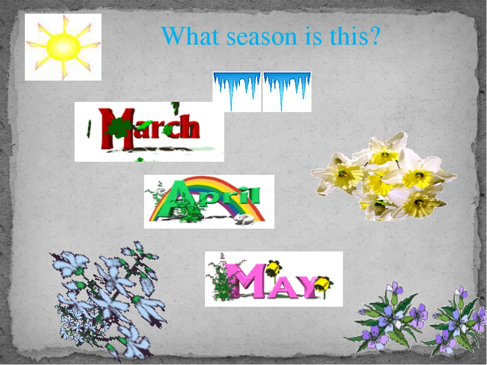 What season is this?