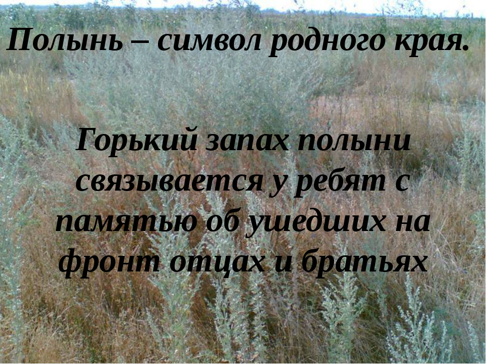 Полынь – символ родного края. Горький запах полыни связывается у ребят с пам...
