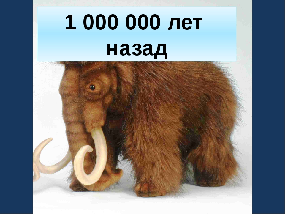 1 000 000 лет назад