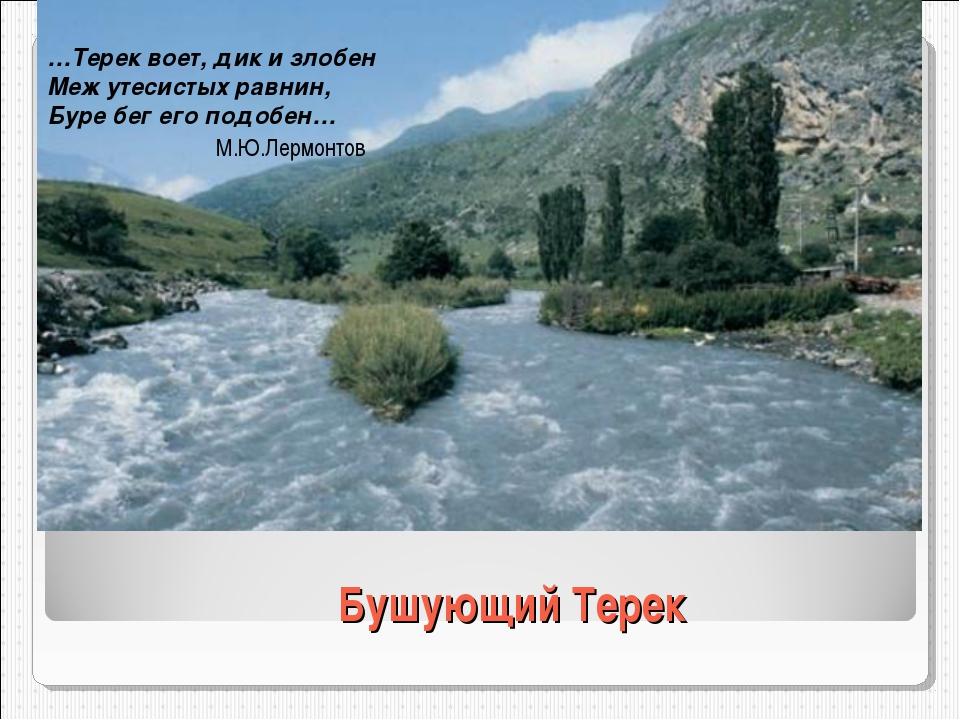 Бушующий Терек …Терек воет, дик и злобен Меж утесистых равнин, Буре бег его п...